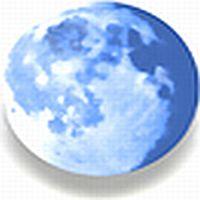 Update Pale Moon 29.4.1